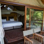 The room at Thakadu River Camp