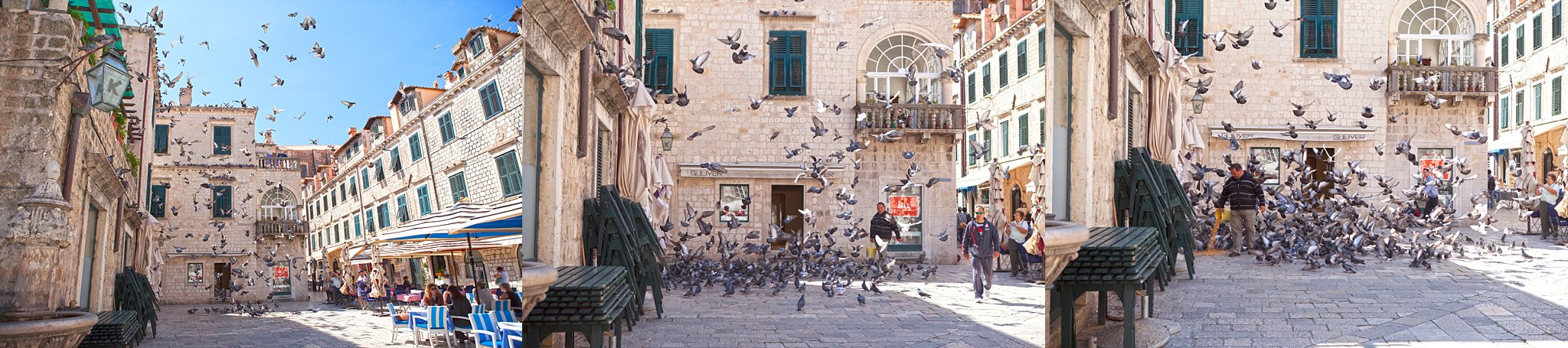 Pigeon feeding at the Square of Loggia